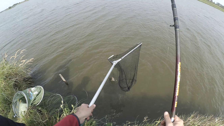 как подготовить червей к рыбалке на карася