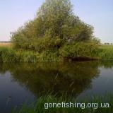 річка Іква на Рівненщині