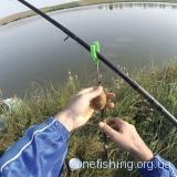 Рыбалка ǀ КАРП И КАРАСЬ ǀ рыбачим на КУКУРУЗУ, ГОРОХ, КАРТОШКУ И ЧЕРВЯ