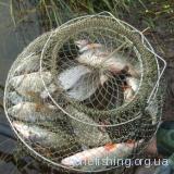 Манка на гачку - рибка в садку...