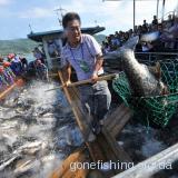 Масова ловля риби в Китаї