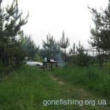 Водосховище поблизу села Оселя