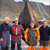 Німецький пенсіонер зловив 220-кілограмову рибину