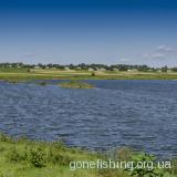 Озеро в селі Суходоли