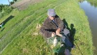ЗАЧЕТНЫЙ КАРП НА ТЕСТО - дедушка инвалид знает как и на что ловить КРУПНОГО КАРПА