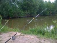 Проста донна снасть для ловлі риби на течії