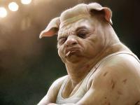 Homo svinus