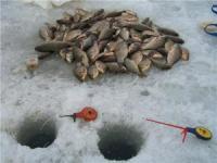 Зимова поплавкова снасть. Складові успіху.