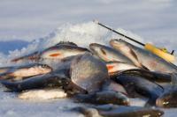 зимова рибалка