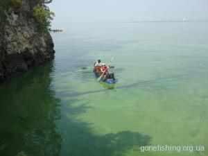 Особливості ловлі риби під час цвітіння води