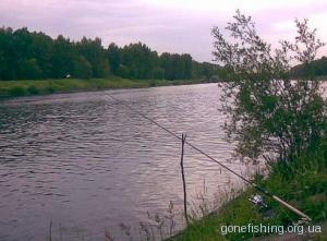 Особливості ловлі риби на каналі