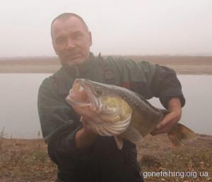 ловля хижої риби на восьминіжку