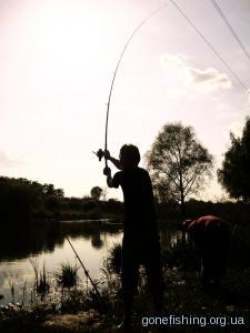 Рибалка завтра: прогноз кльову та готовність до рибалки