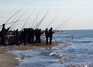 Яку рибу ловити на морі у відпустці?