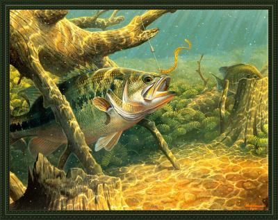 Риби під водою